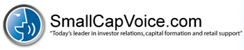 Small Cap Voice
